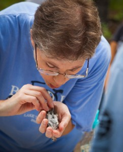 Janice Greene bird banding