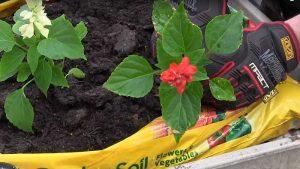 Make starting a garden quick, easy