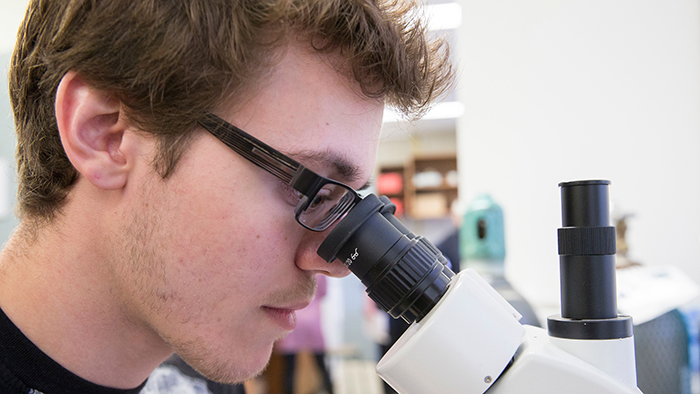Tanner Hoog working in Udan's lab.