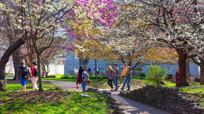 Students walk near trees on campus