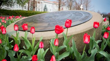New members announced for MSU Board of Governors