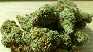 Some marijuana