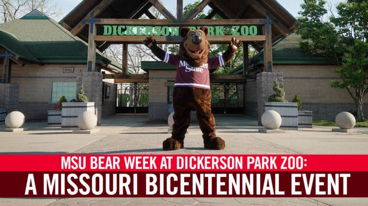 Boomer Celebrates Bear Week
