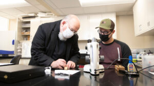 David Claborn and a student observe mosquitoes under a microscope