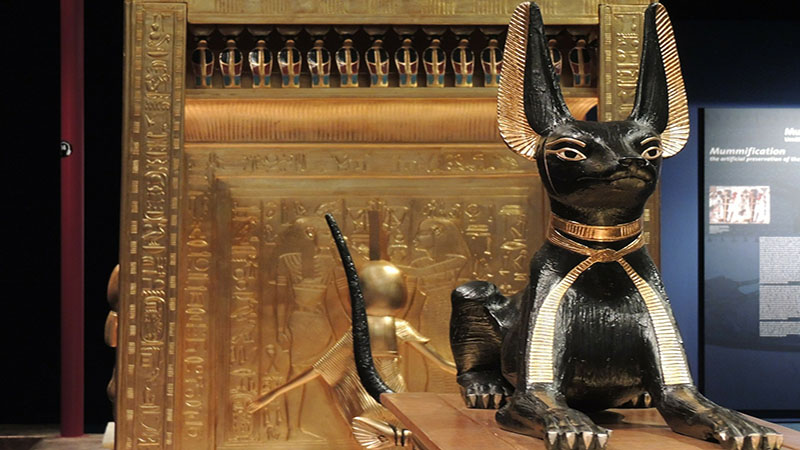 A large black and gold cat sculpture in front of Egyptian motifs in gold.