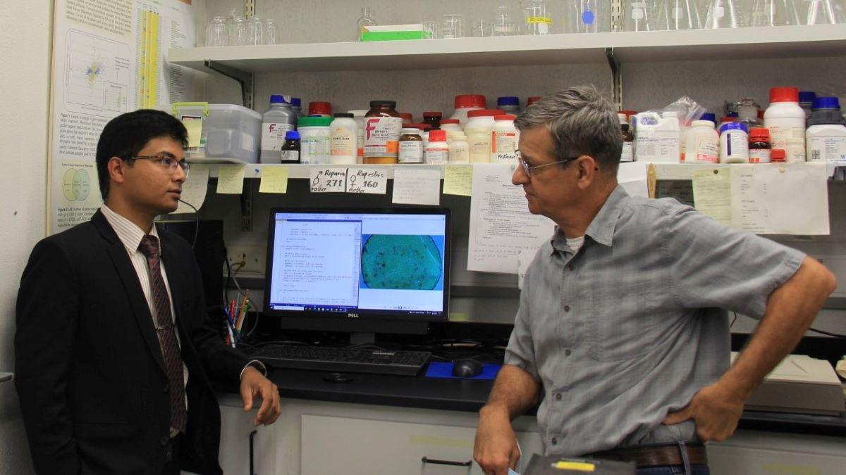Dr. Razib Iqbal (left) and Dr. Laszlo Kovacs (right) talk in their research lab.